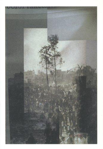 Rob Johannesma: In Dark Trees