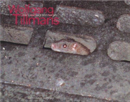 Wer Liebe wagt lebt morgen (Katalog zur Ausstellung im kunstmuseum wolfsburg 1996)