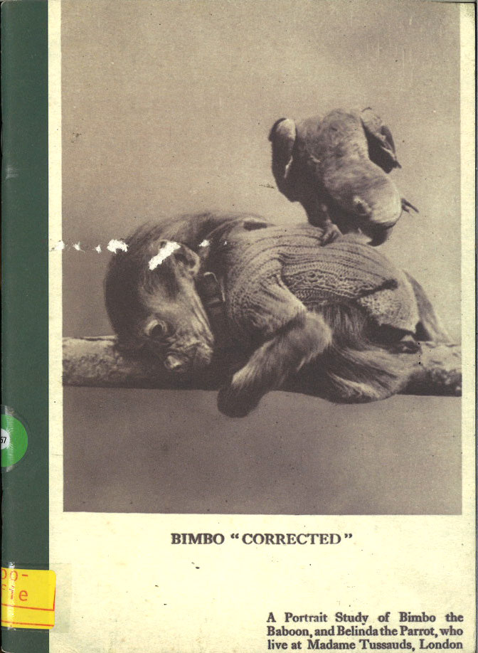 Bimbo'corrected'