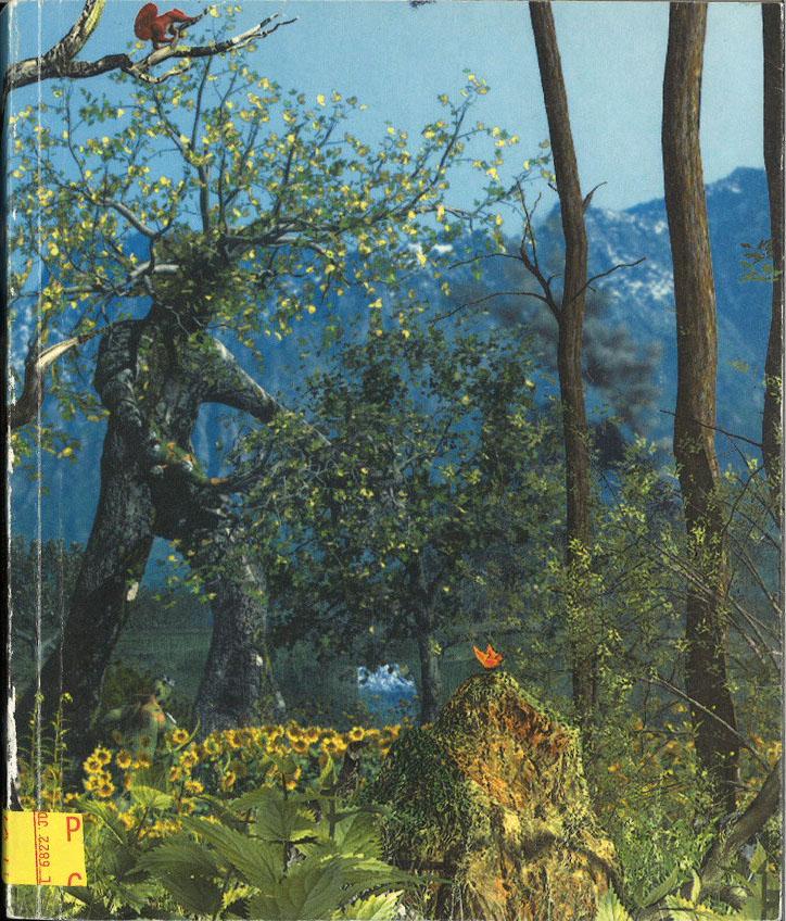 Eindexamen catalogus 2004: Academie voor beeldende kunste en vormgeving Arnhem